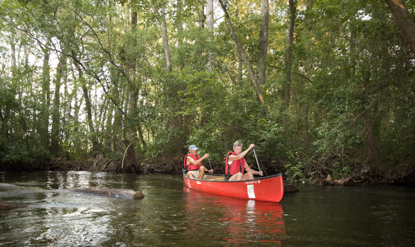 Aiken State Park Canoe  | Thoroughbred Country