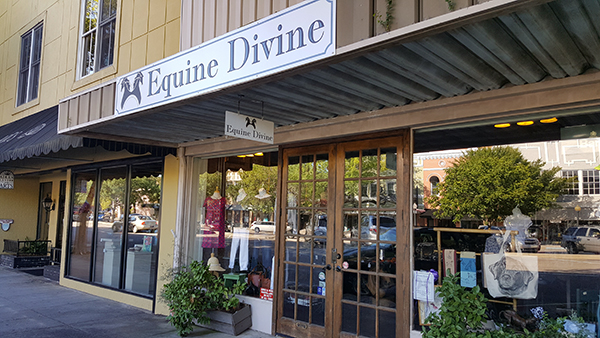 Equine Divine | Thoroughbred Country