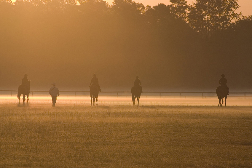 Get Out - 10 Ways to Embrace the Outdoors | Thoroughbred Country