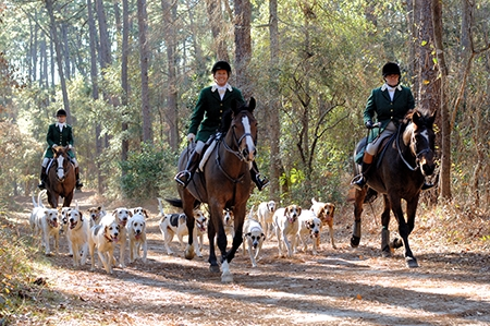 Blessing of the Hounds, Annual Event | Thoroughbred Country