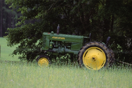 Old John Deer Tractor | Thoroughbred Country