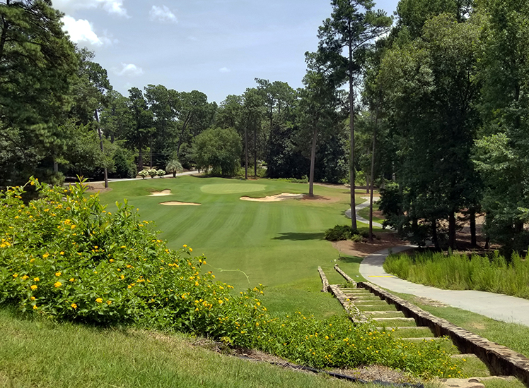 The Aiken Golf Club - MYGG Content   Thoroughbred Country