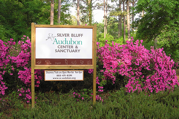 Silver Bluff Audubon Center and Sanctuary | Thoroughbred Country
