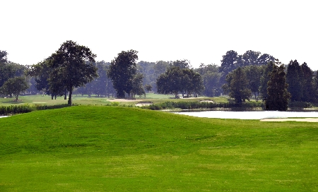 Golf Course | Thoroughbred Country
